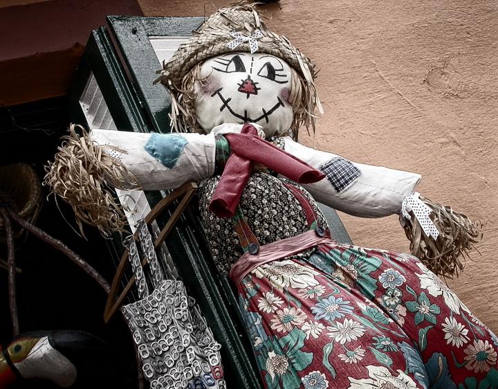 Urban scarecrow